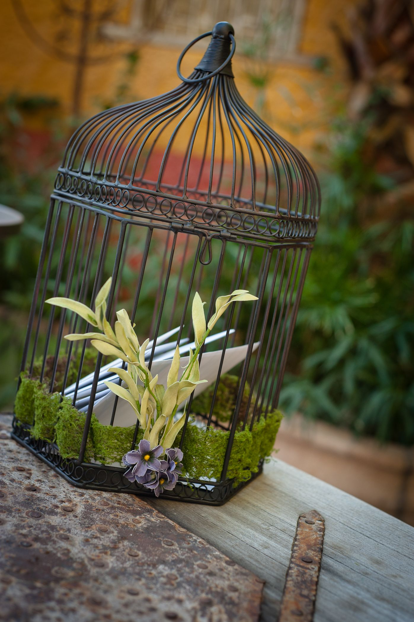Moss Ribbon Woven Through A Birdcage Added Floral For A Unique