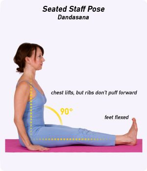 how to do seated staff pose in yoga  yoga poses for