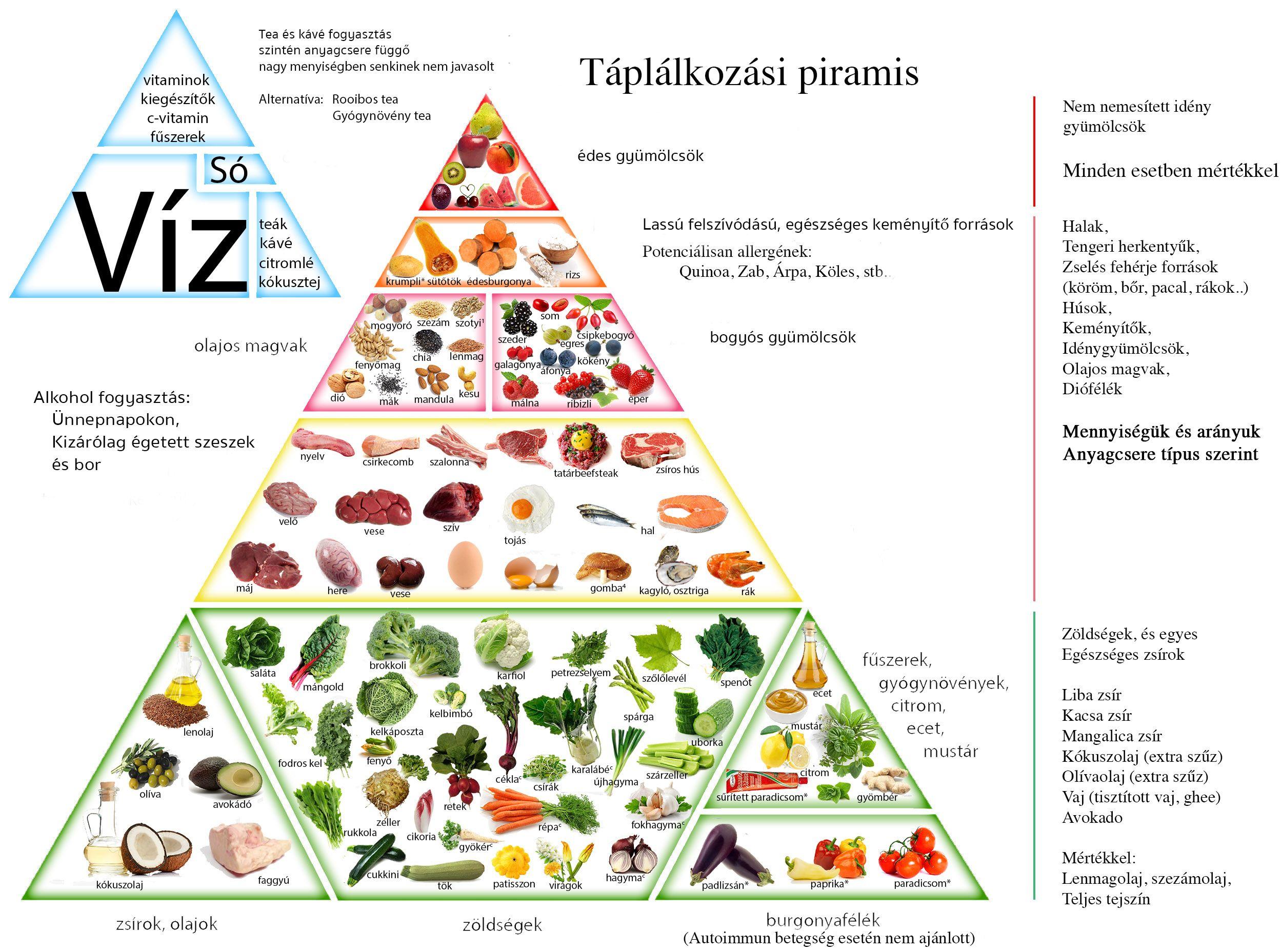 Táplálkozási piramis - Étrend, Ketogén étrend, Táplálkozás