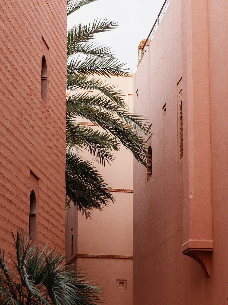 Quietude in Marrakech