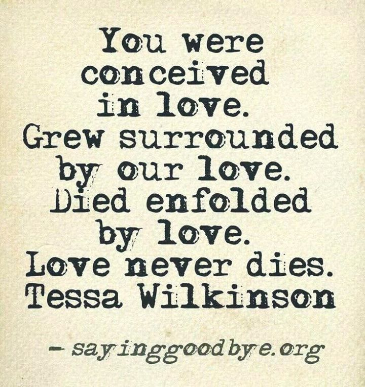 Stillborn Quotes Extraordinary Pin By Johnny Wilson On Endings New Beginnings Pinterest Grief