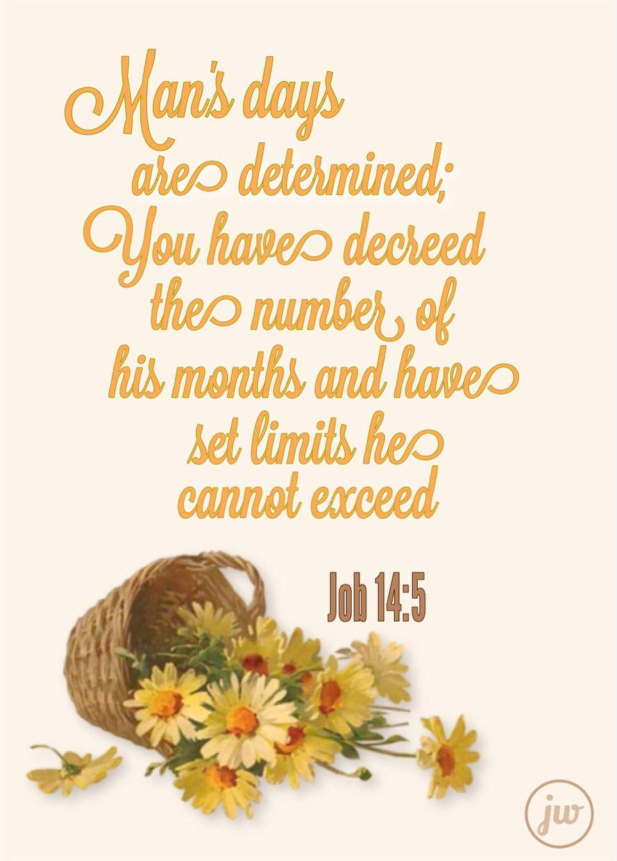 Job 145 Bible meditations, God loves me, Love scriptures