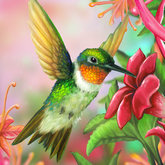 Free Hummingbird Paintings and Prints | Layer Paint Ruby ...