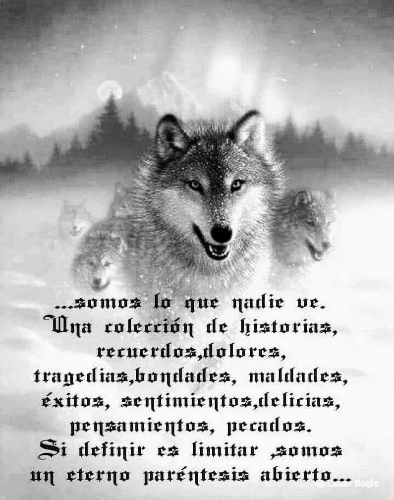 Nuestra Esencia Frases De Lobos Lobos Y Lobos Enamorados