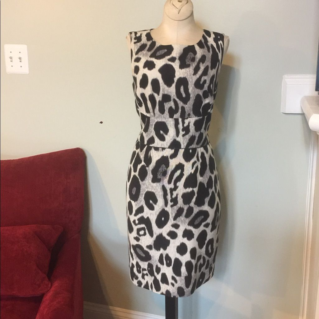 Ann Taylor Cheetah Print Dress