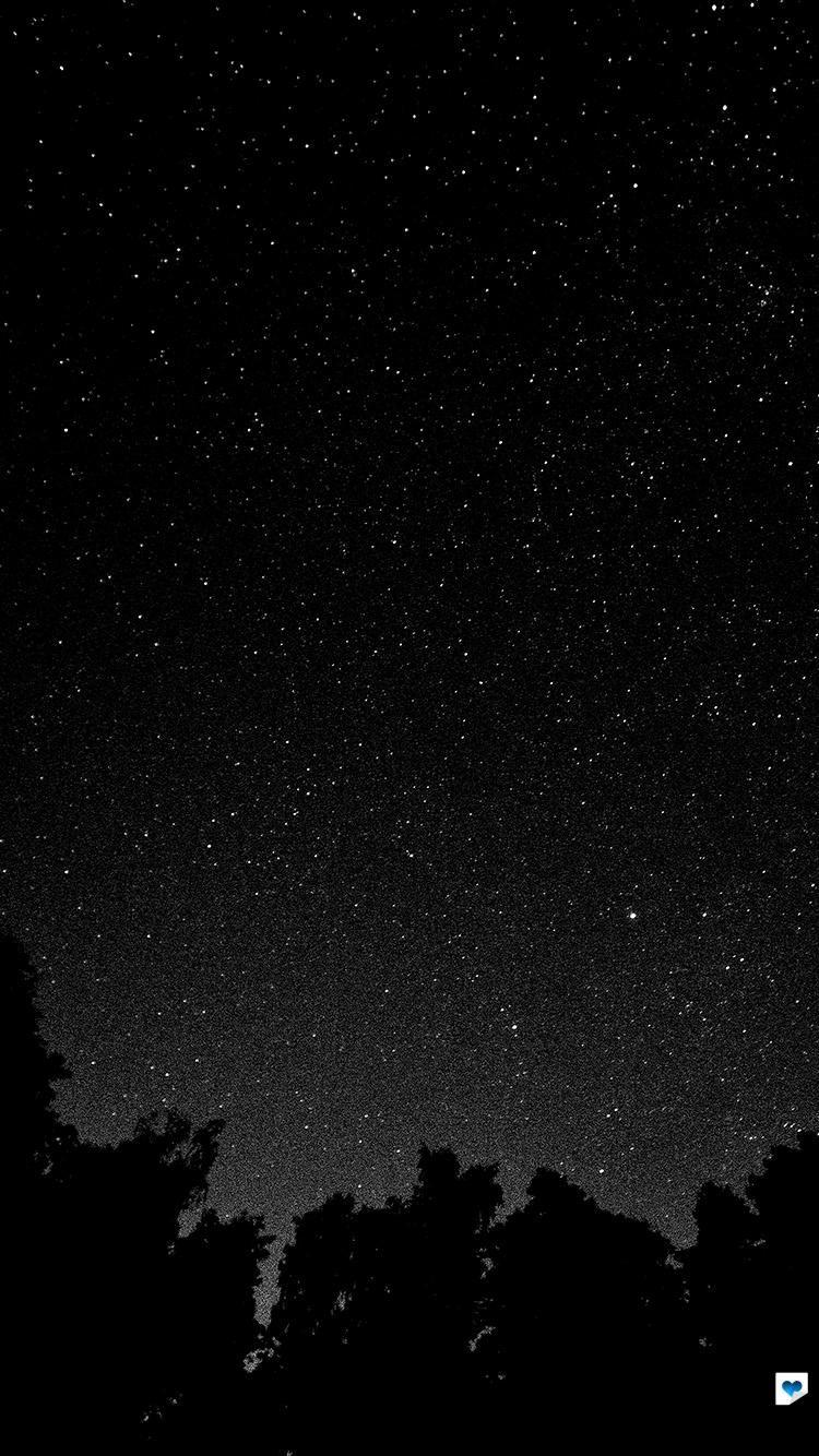 Mt43 Starry Night Sky Star Galaxy Space White Black Night Sky Wallpaper Night Sky Stars Starry Night Sky