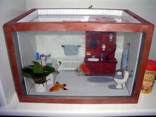Bathroom fish tank cute and fuzzy pinterest fish for Bathroom fish decor