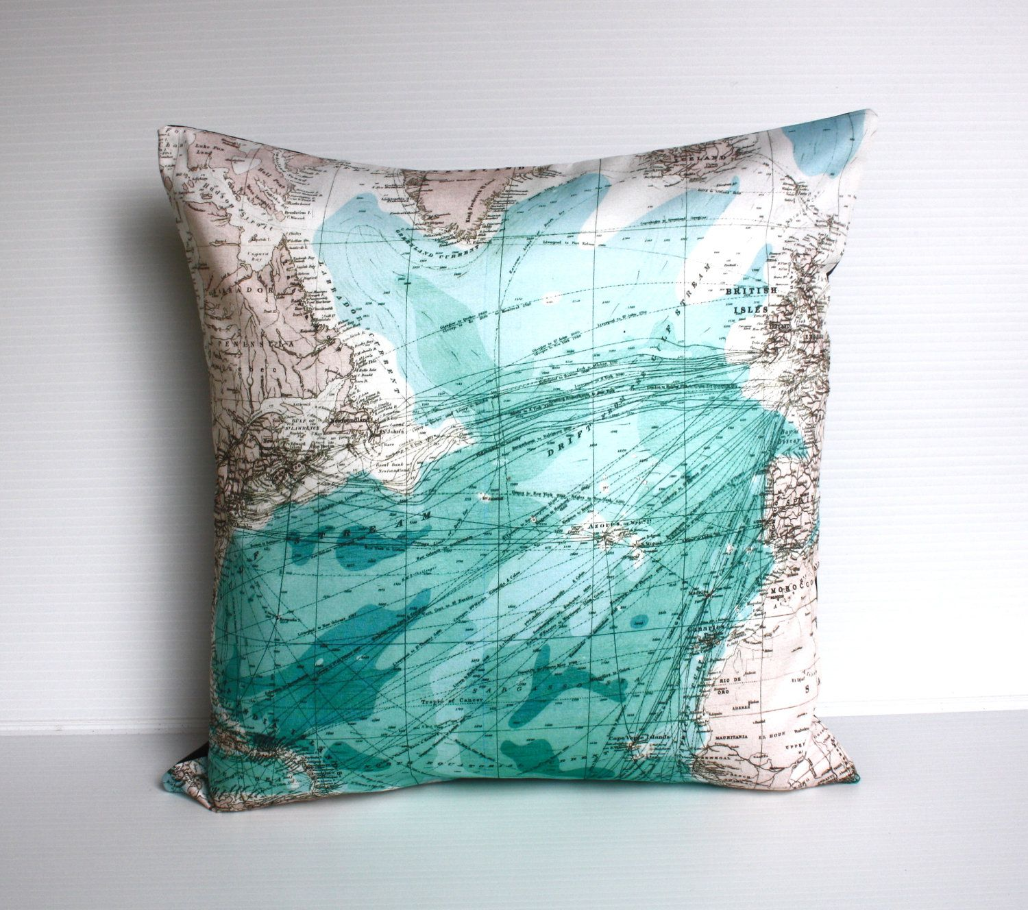 Vintage map print map pillow cover eco friendly cushion map
