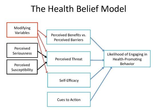 the health belief model Does a body good Pinterest Health - sample threat assessment