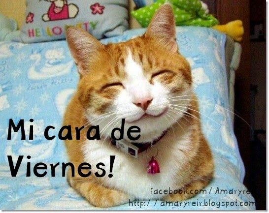 tu cara de #viernes jajajaja
