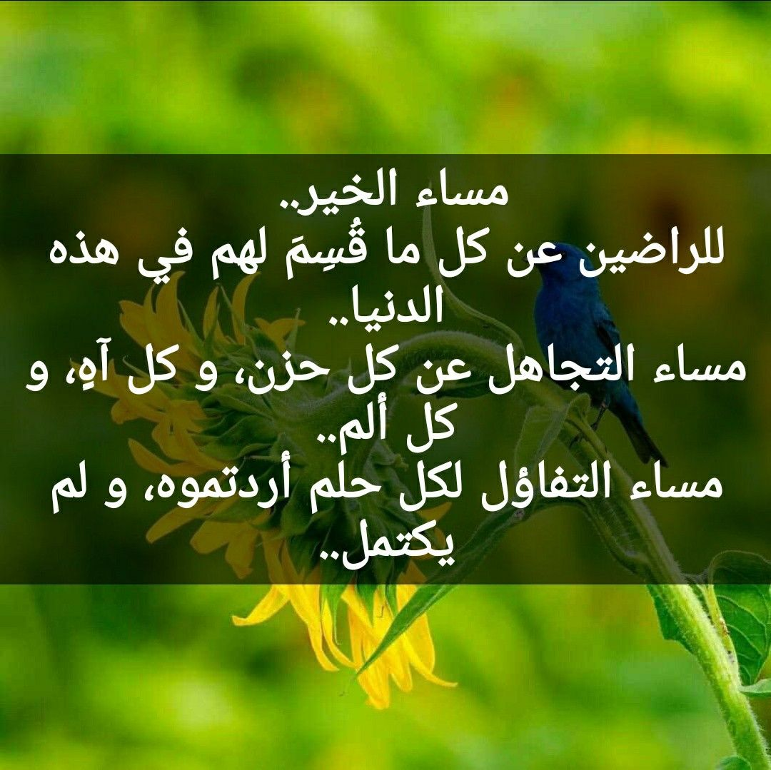 Pin By Khulood Om Hamoudy On مساء الخير Love Messages Good Evening Messages