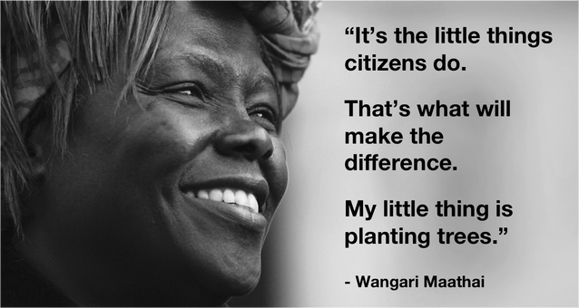Wangari Maathai - Powerhouse Environmentalist | Trees to ...