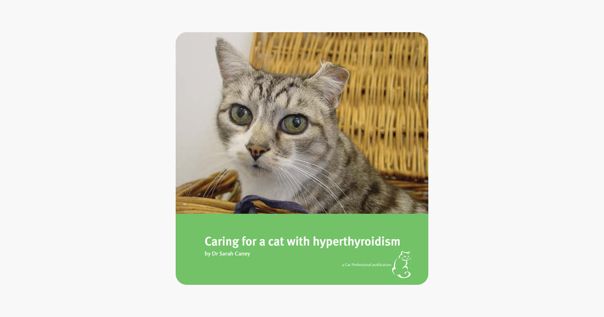 Caring for a Cat with Hyperthyroidism Dr. Sarah Caney