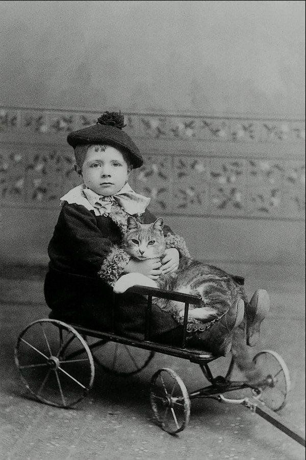 Ребенок с кошкой , ок.1890 г. Фотограф Джон А. Уилер ...