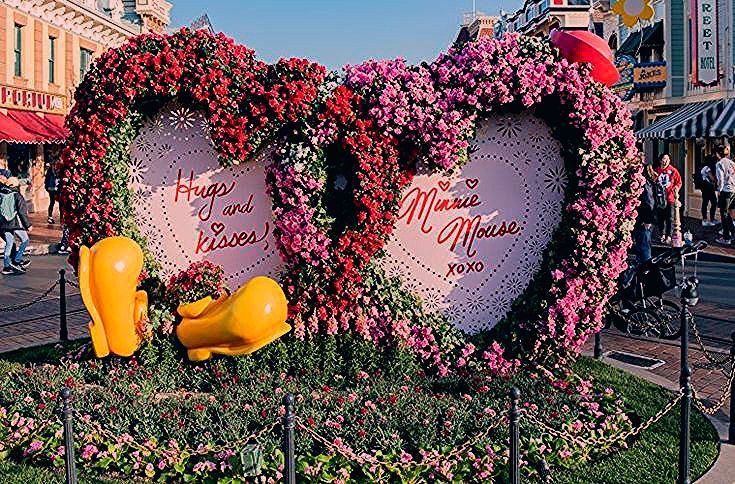 Photo of Disneyland Paris Night Disneyland