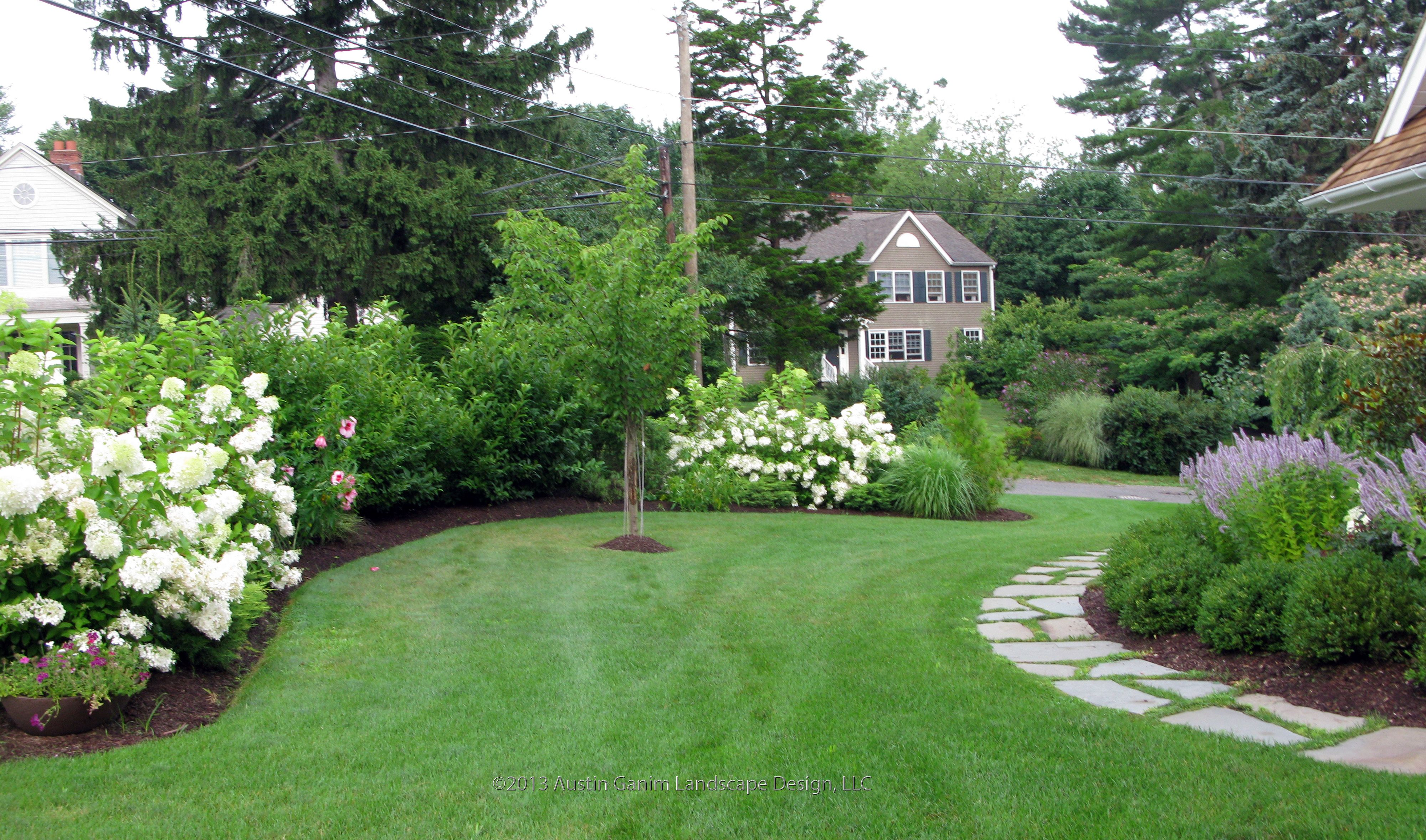 Pin By Austin Ganim Landscape Design On Beach Area Garden With A Touch Of Woodland Elements Hydrangea Landscaping Front Landscaping Garden Landscaping