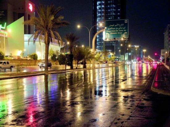 Tahlia Street Trip Advisor Riyadh Photo
