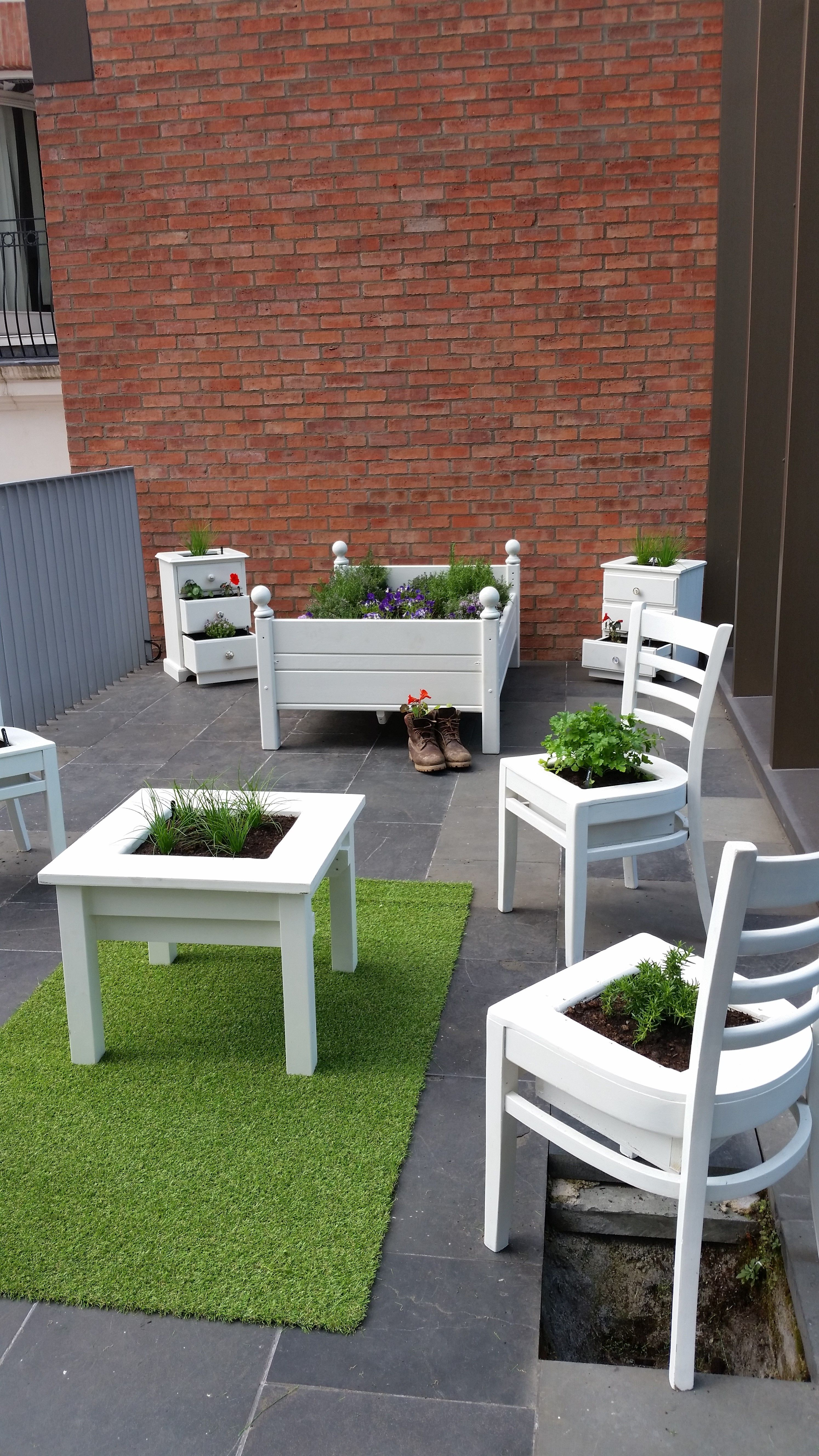 Old furniture planted with edible flowers and herbs in