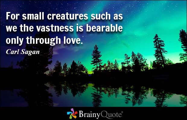 Genial For Small Creatures Such As We The Vastness Is Bearable Only Through Love.    Carl