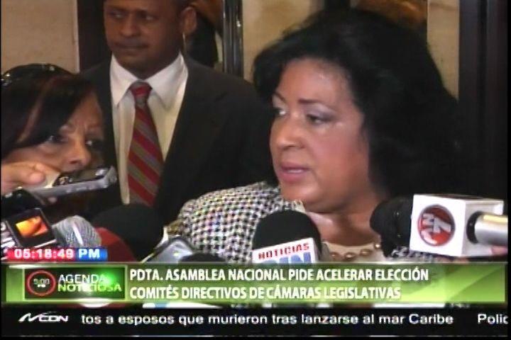 Presidenta De La Asamblea Nacional Pide La Aceleración De La Elección De Comité Directivos De La Cámaras Legislativas
