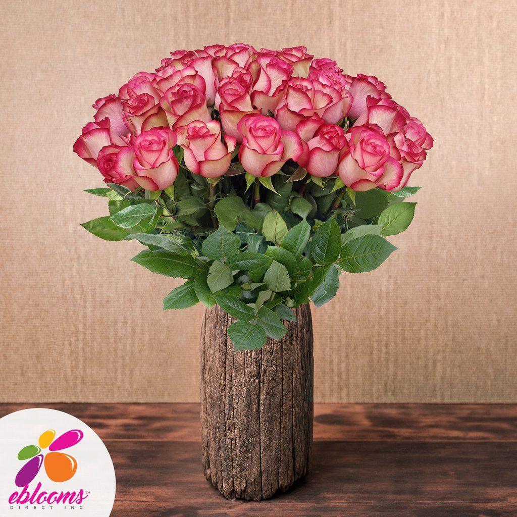 Wholesale Flowers For Weddings Events: Roses Bicolor White &Pink 50cm- Ebloomsdirect