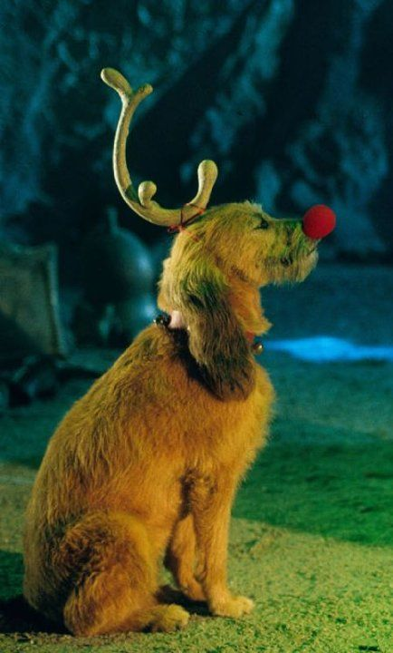 Pictures & Photos from How the Grinch Stole Christmas (2000) - IMDb