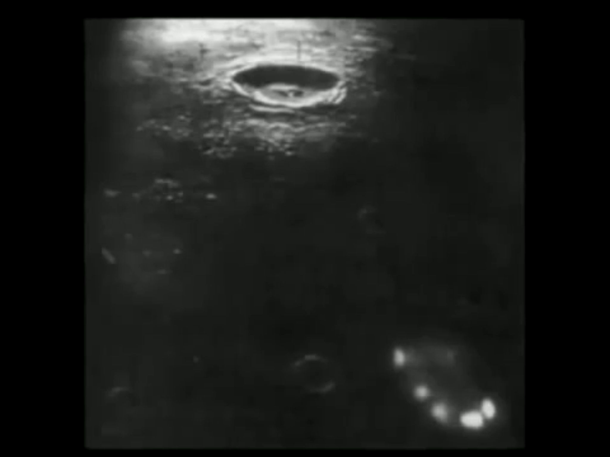 Ufo captured by Neil Armstrong. | Nothing to Hide | Ufo ...