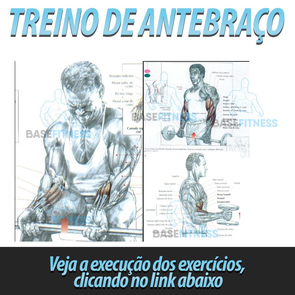 exercicios para antebraço com halteres