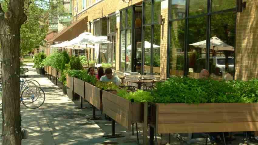Edible Garden At Restaurant Cafe Exterior Outdoor Cafe Patio