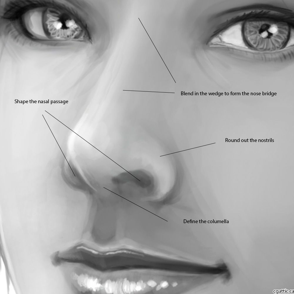 How To Draw A Nose In 4 Steps With Photoshop Do These Art