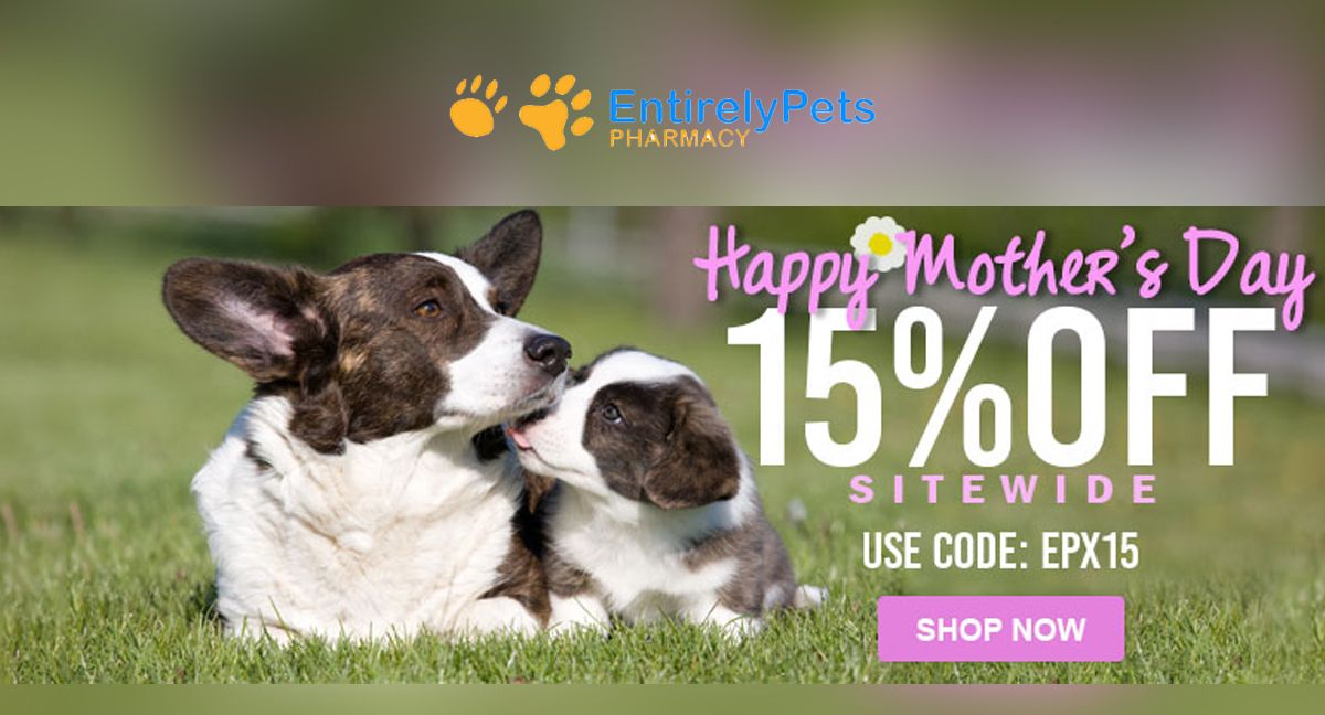 Entirelypetspharmacy Happy Mother S Day 15 Off Sitewide Pets Pet Food Pet Supply Animals Dental Veggiedent Pets