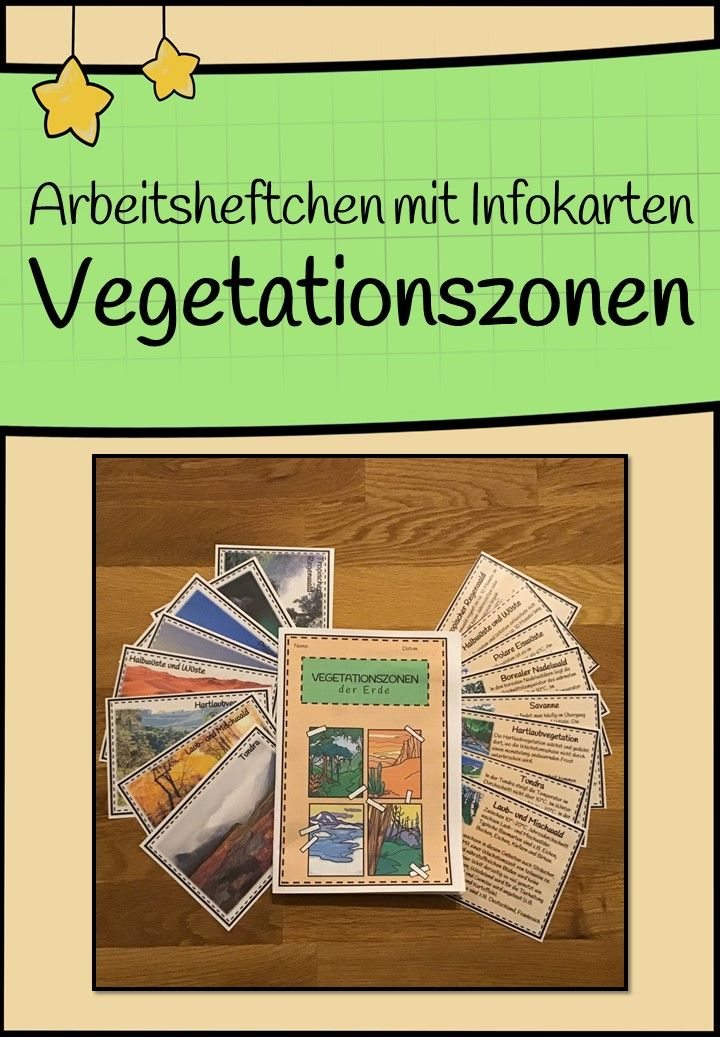 Vegetationszonen der Erde