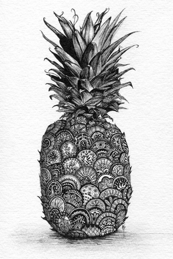 Pineapple. Print of Pen and Ink with Graphite. Zentangle inspired ...