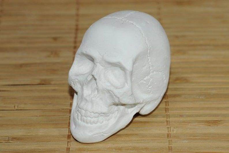 Decor Sized Human type Skull clear silicone mold