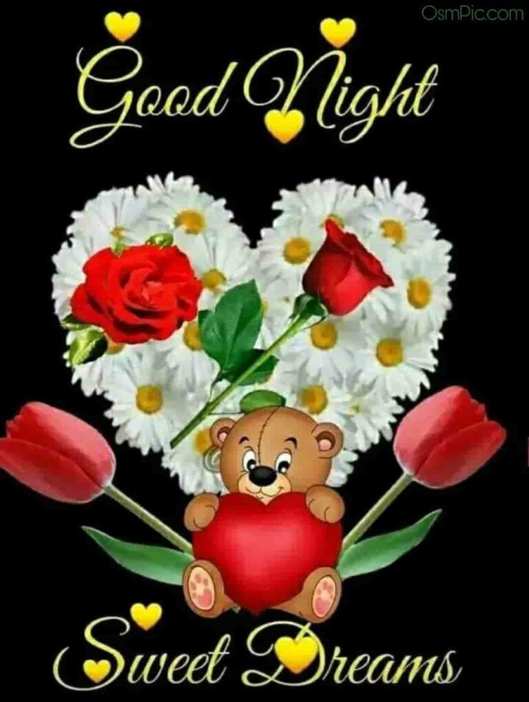Good Night Image With Teddy Bear And Red Rose Good Night Flowers Good Night Good Night Greetings