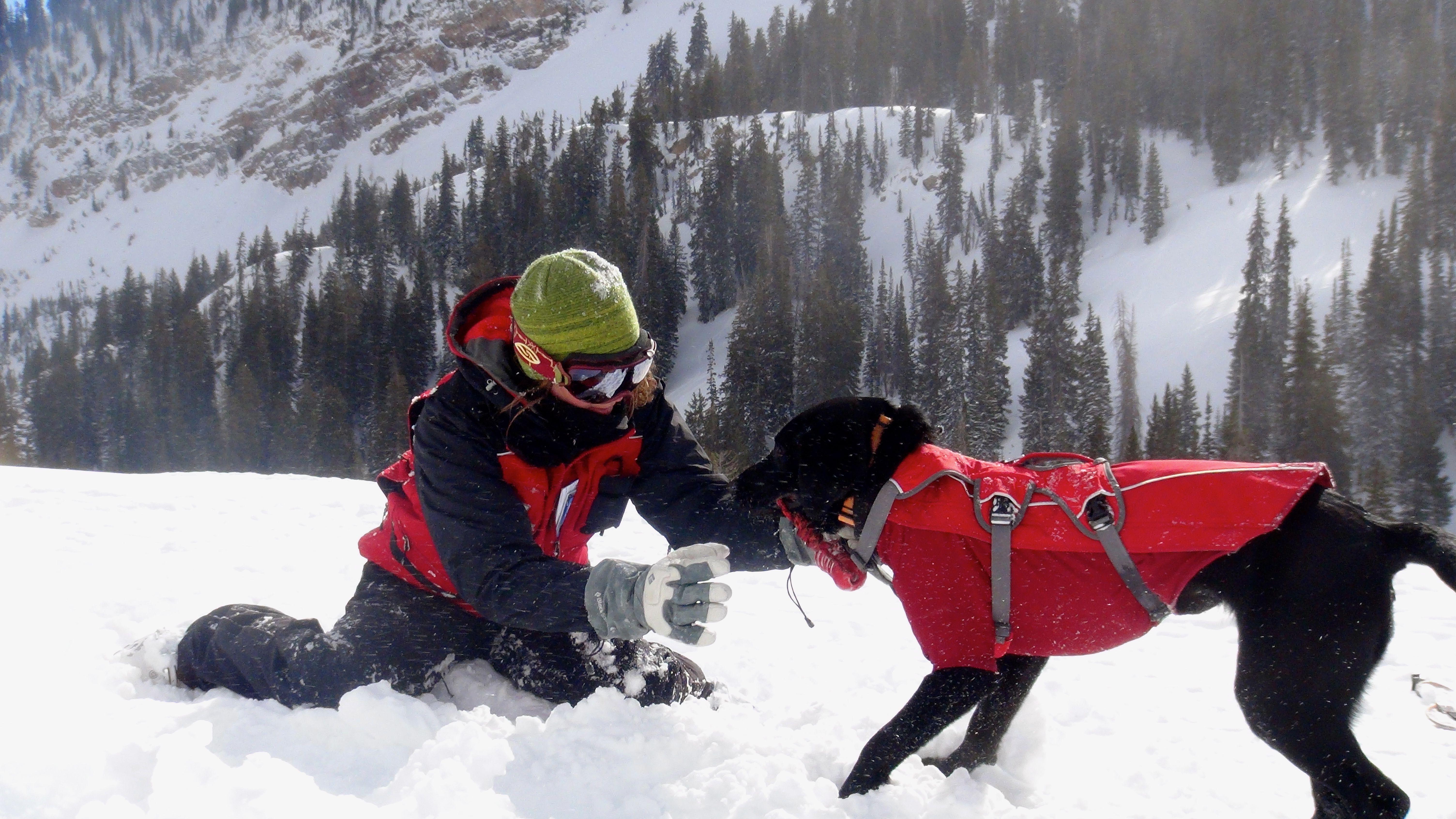 Ruffwear Attends Wbr Avalanche Rescue Dog School Dog School
