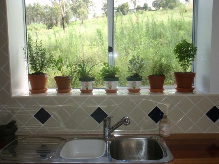 Macetas de hierbas arom ticas de interior casa for Plantas aromaticas de interior