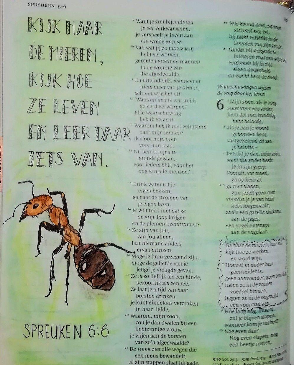 spreuken 6 6 Spreuken 6:6 | Creatief met de Bijbel   Bible, Bible art en  spreuken 6 6