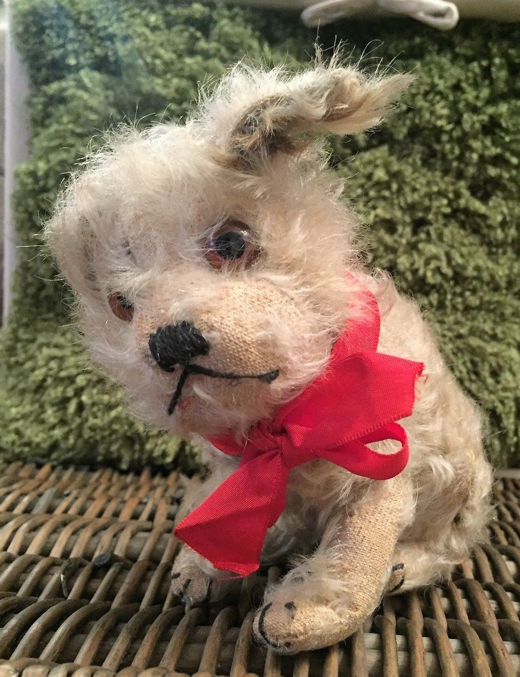 Steiff molly - rare 1920's antique old #mohair dog - #original + button #teddy be,  View more on the LINK: http://www.zeppy.io/product/gb/2/192051525146/