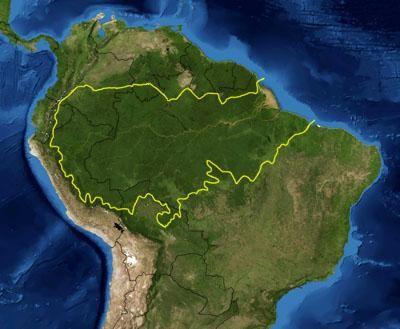 Amazon Rainforest Wikipedia Rio Amazonas Floresta Amazonica