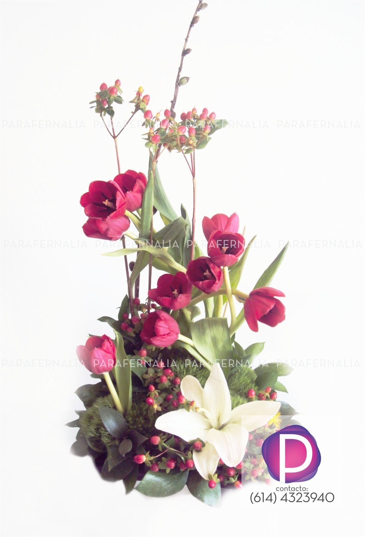 Modern Floral Arrangements Tulipanes Rojos