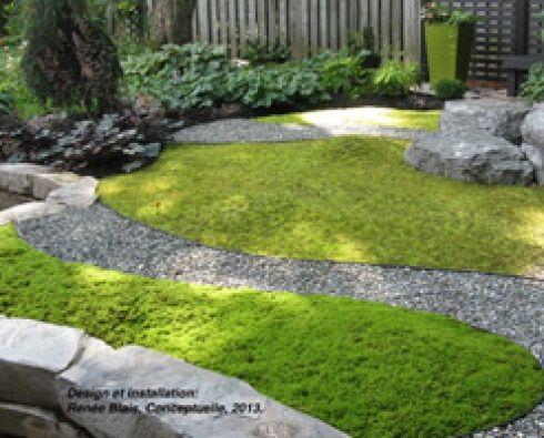 plantes couvre sol demandant peu d entretien ext rieur id es d co jardinage etc pinterest. Black Bedroom Furniture Sets. Home Design Ideas
