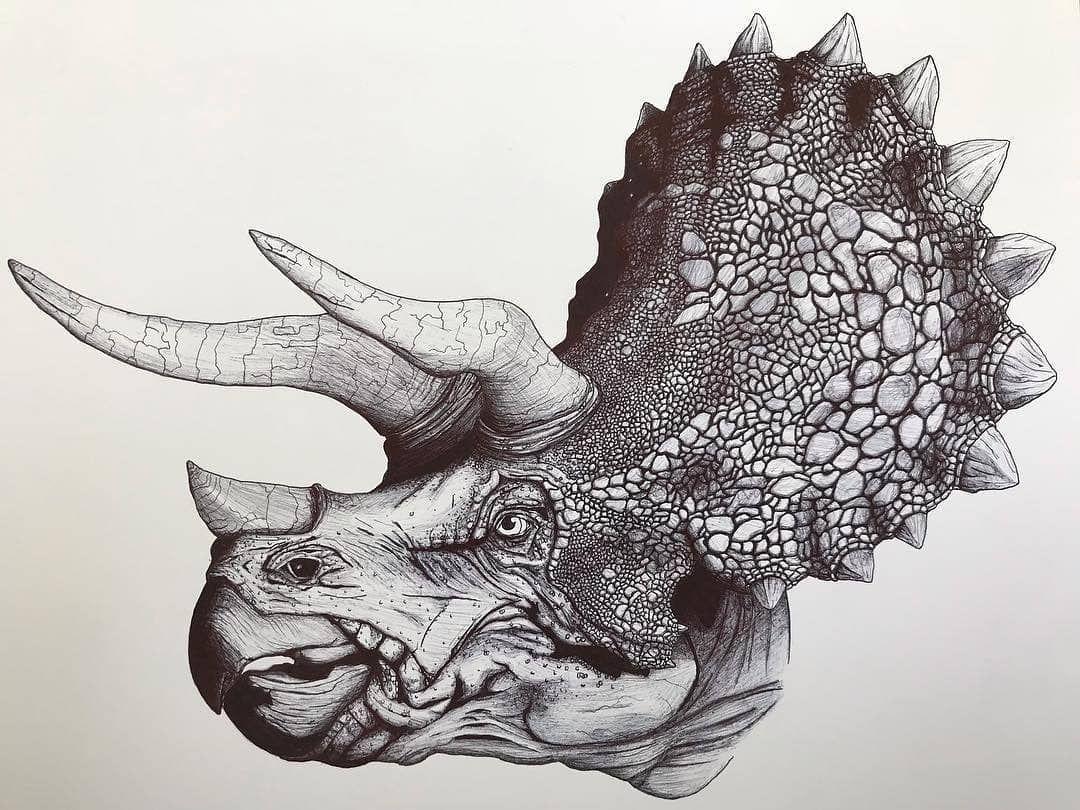 Discoverdinosaurs On Instagram Follow Discoverdinosaurs For More Paleoart Tag Your Friends Artist Instagram Lion Sculpture