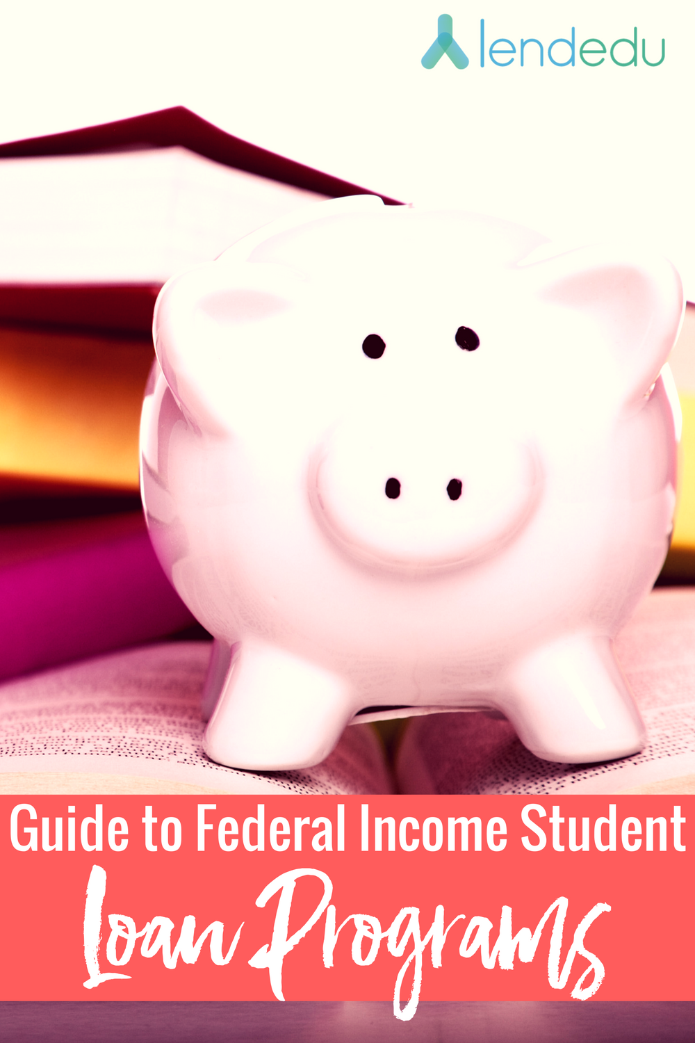 Guide to Federal Income Student Loan Programs