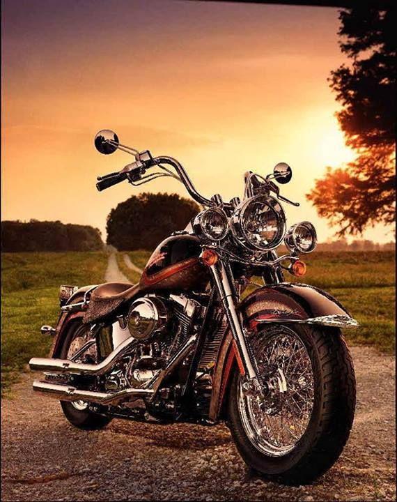 Harley Davidson Motorcycle || country road at sunset ...
