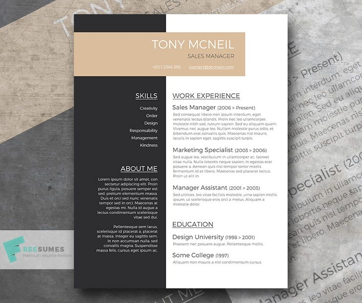 Free Professional Resume Sample Professional resume
