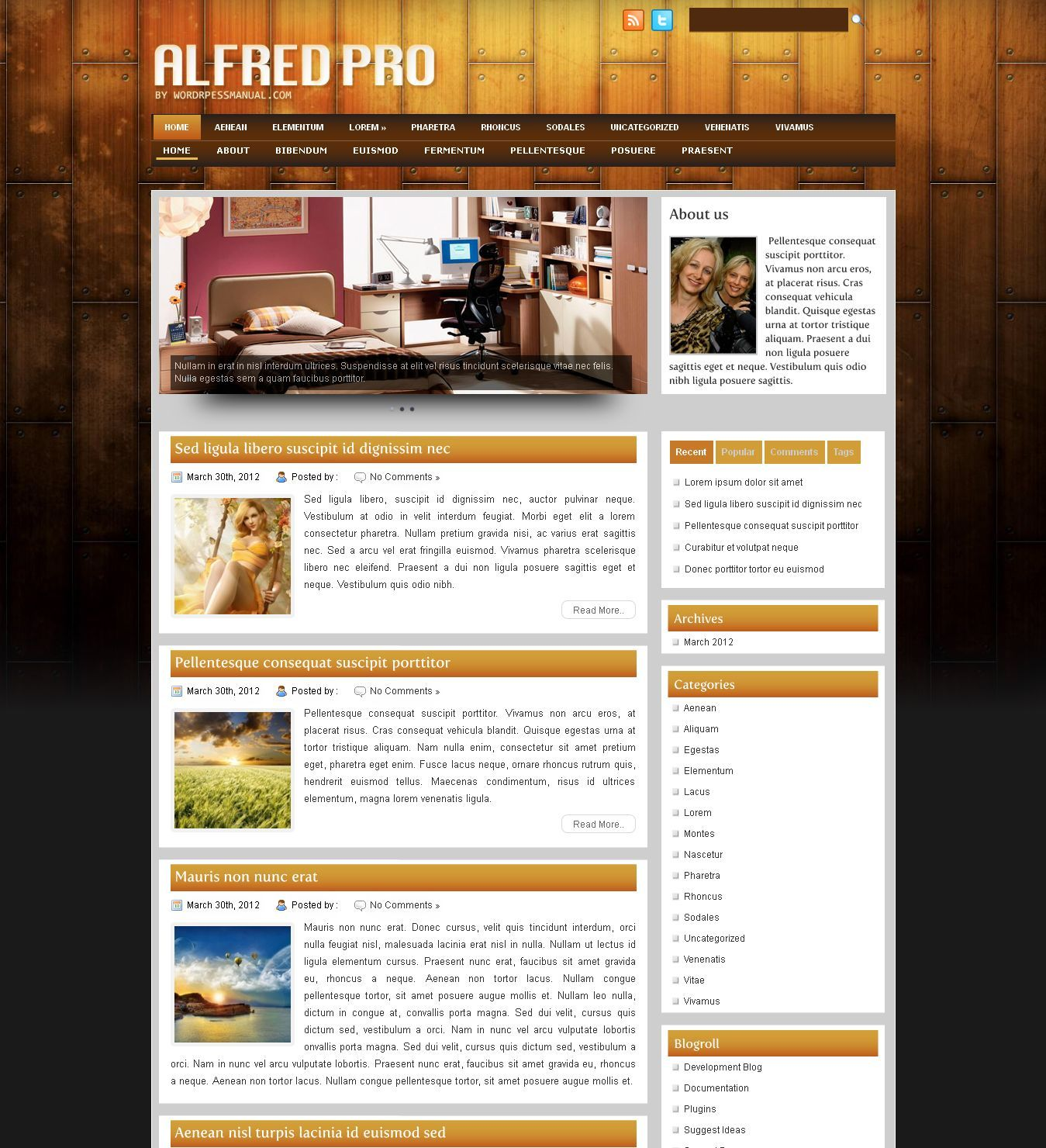 http://www.victoo.net/alfred-free-wordpress-template-332.html