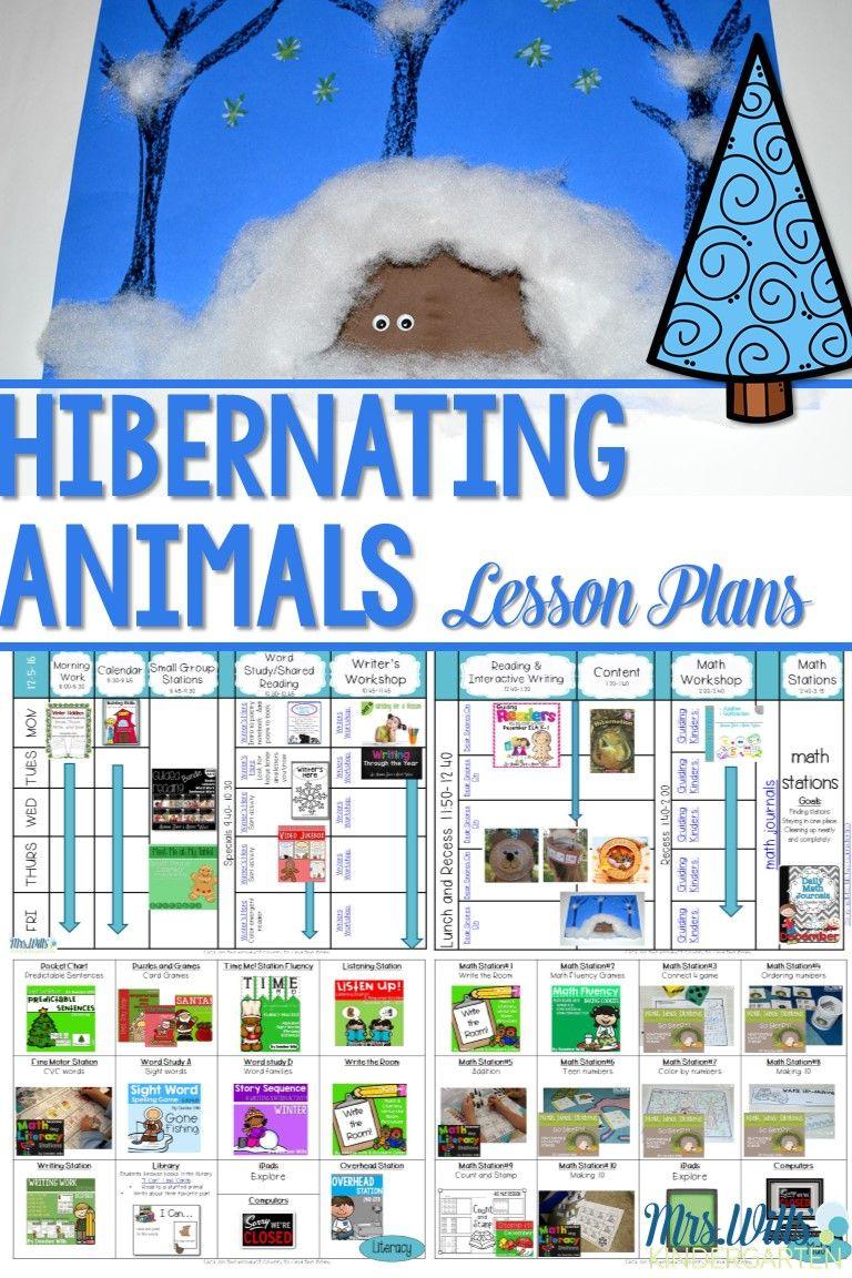 Hibernating Animals Lesson Plans Winter Lesson Plan Animals That Hibernate Kindergarten Lesson Plans [ 1152 x 768 Pixel ]