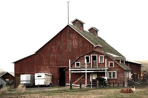 I loved passing by this barn...