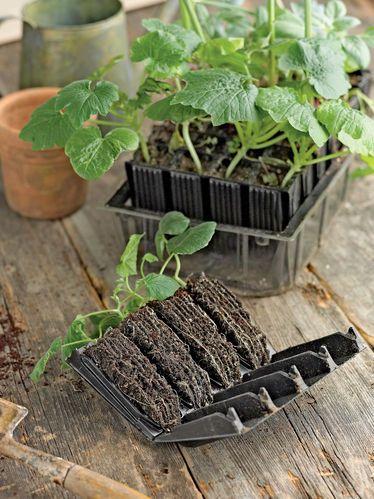 Rootrainer Deep Gardener S Supply Company Garden Supplies